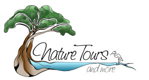 Nature Tours and More
